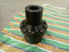 gear couplings exported Poland